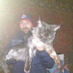 Евгений, 38 лет, Рыбинск