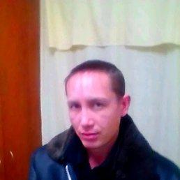 Roman, 36 лет, Киров