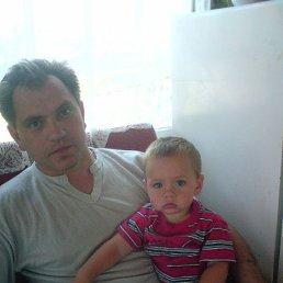 Николай, 51 год, Верея