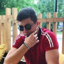 Денис, 20 лет, Мелитополь