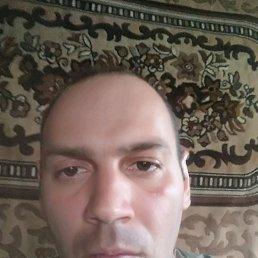 Игорь, 34 года, Пологи