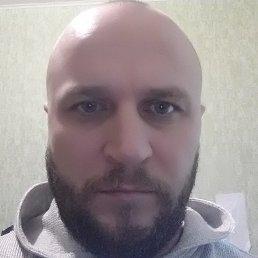 Андрей, 39 лет, Волжский