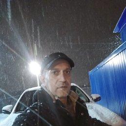 Шахин, 44 года, Сафоново