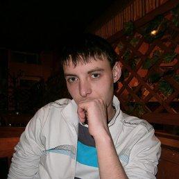 александр, 29 лет, Липецк
