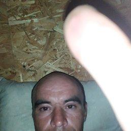 Константин, 37 лет, Оренбург