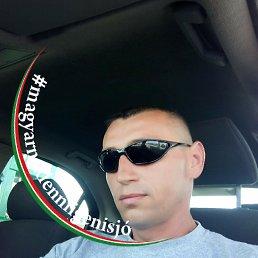 Szabolcs, 42 года, Берегово