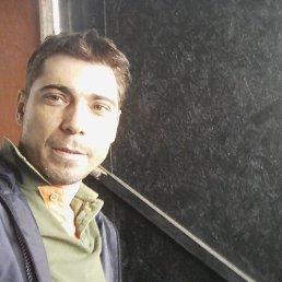 Денис, 35 лет, Доманевка