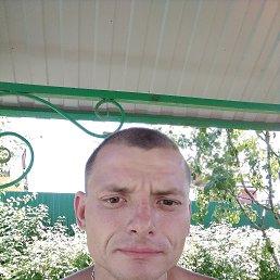 Александр, 32 года, Белгород