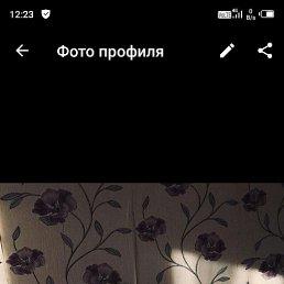 ОЛЬГА, 40 лет, Казань
