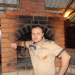 Дмитрий, 28 лет, Витебск
