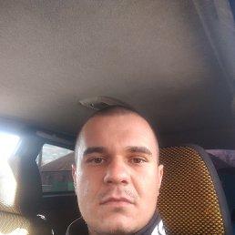 Александр, 28 лет, Ростов-на-Дону
