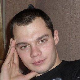 Дмитрий, 33 года, Сафоново