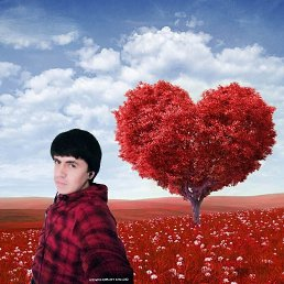 Soleh, 20 лет, Мурманск
