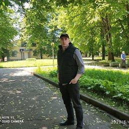 Карим, 28 лет, Кавказ