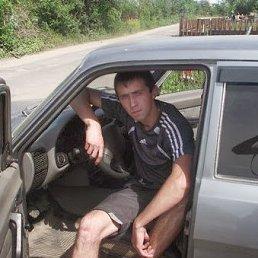 Андрей, 28 лет, Липецк