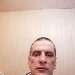 Андрей, 49 лет, Чаплыгин
