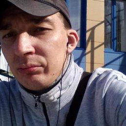 Максим, 37 лет, Курск
