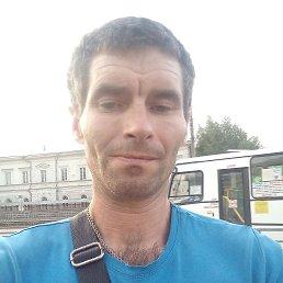 Саша, 40 лет, Барнаул