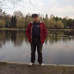 Андрій, 43 года, Ровно