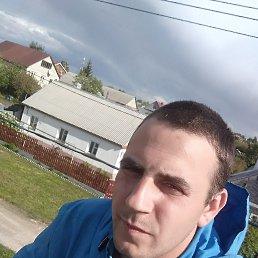 Юрий, 26 лет, Тольятти