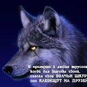 Фото Смаль, Свердловск, 29 лет - добавлено 18 июля 2020