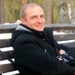 Алексей, 37 лет, Димитровград