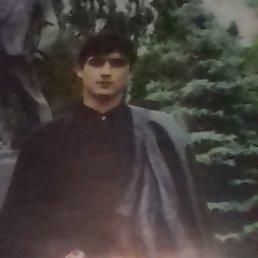 Самир, 29 лет, Йошкар-Ола