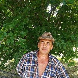 Владимир, 51 год, Белгород