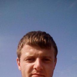 Александр, 23 года, Киев