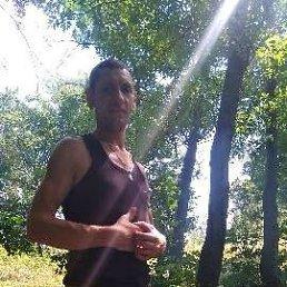 Евгений, 36 лет, Киев