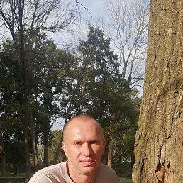 Денис, 42 года, Воронеж