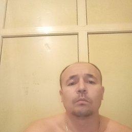 Акмал, 33 года, Саратов