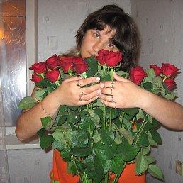 Юлия, 34 года, Киев