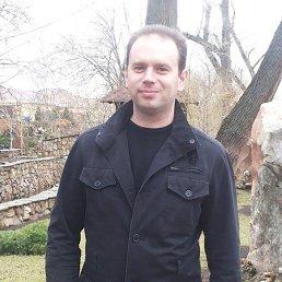 Сергей, 37 лет, Луганск