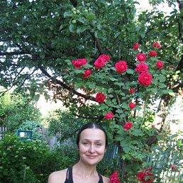 Екатерина, 44 года, Воронеж