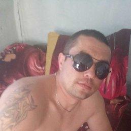 Алексей, 29 лет, Бийск