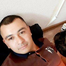 Шохрух, 28 лет, Эльбан