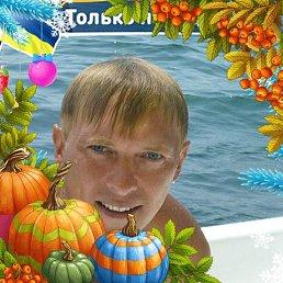 Андрей, 42 года, Александрия
