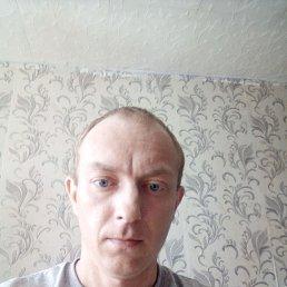 Виктор, 28 лет, Тула