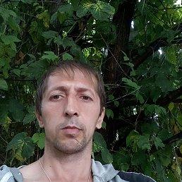 Виктор, 36 лет, Волгоград