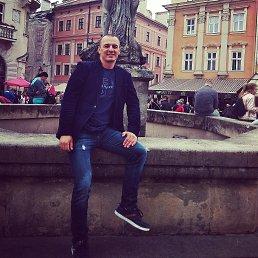 Rosss, 40 лет, Львов