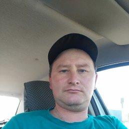 Толя, 34 года, Ижевск