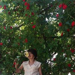 АННА, 43 года, Бородянка