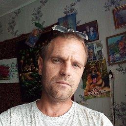 Дмитрий, 43 года, Хабаровск