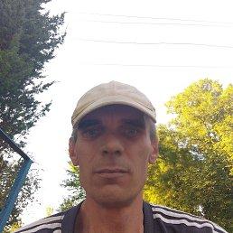 Вася, 43 года, Бережаны