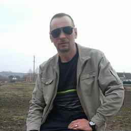 Александр, 53 года, Кромы
