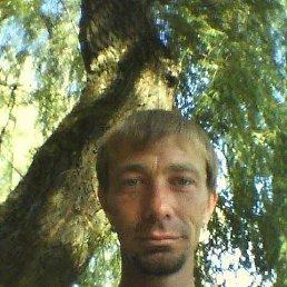 Алексей, 41 год, Мариуполь