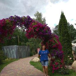 Елена, 39 лет, Дзержинск