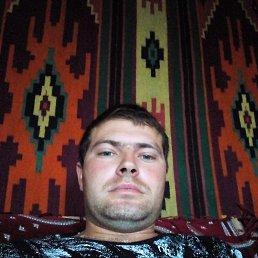 Коля, 28 лет, Новомиргород