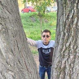 Максим, 46 лет, Кемерово